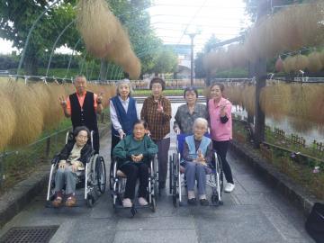 医療法人社団恵和会 / 株式会社コンプリート/ケアセンターおがわ デイサービス 介護職員